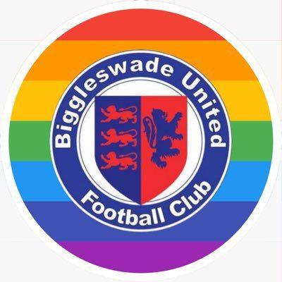 Biggleswade United Ladies Logo