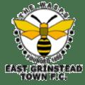 East Grinstead Town Logo
