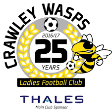 Crawley Wasps Ladies Development Logo