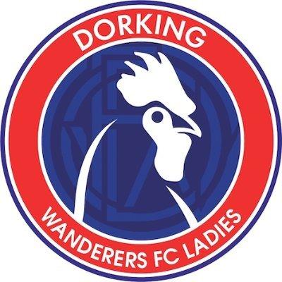 Dorking Wanderers Women Logo