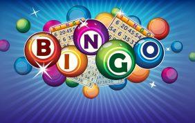 Bingo Nights