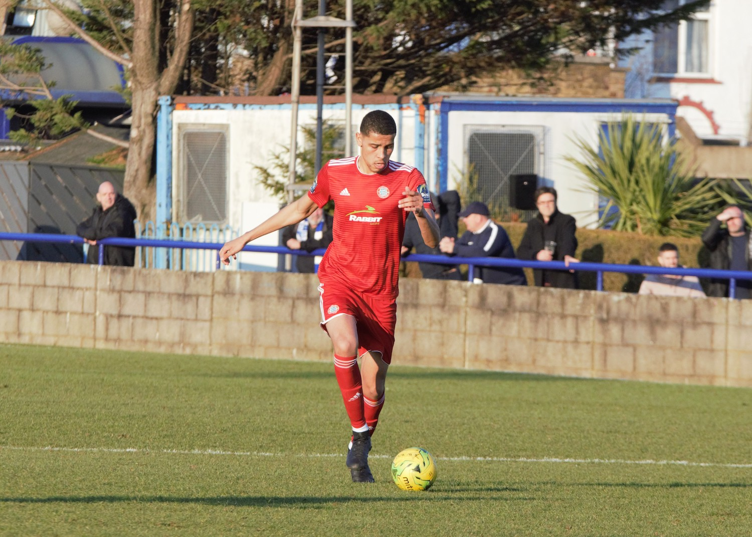 Read the full article - Gallery: Wingate & Finchley [A] – League