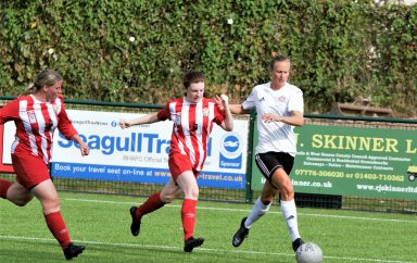 Reds hit eight to sink Steyning in FA Cup rout