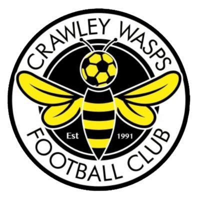 Crawley Wasps Logo